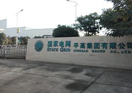 国家电网 河南平高集团有限公司